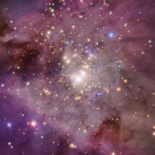 cosmos1